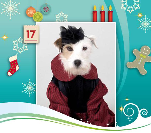 17-adventskalender-2013