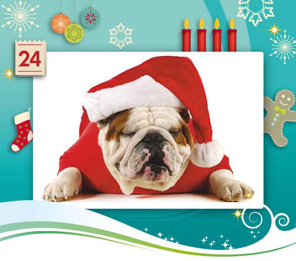24-adventskalender-2013