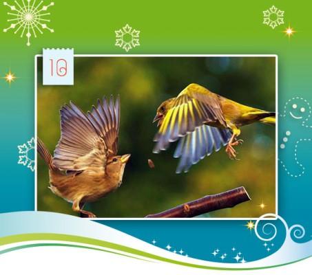 10-adventskalender-2014