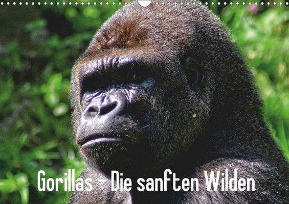 gorillas_cover