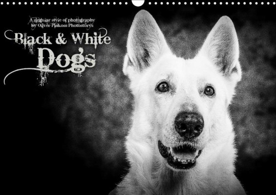 BW_Dogs