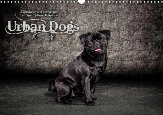 Oliver Pinkoss: Urban Dogs