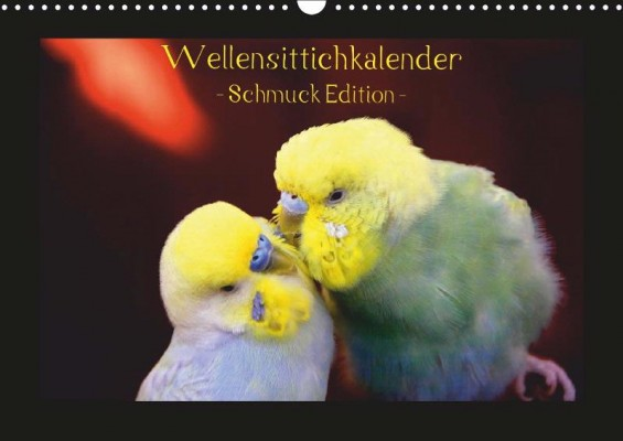 Wellensittichkalender Schmuckedition