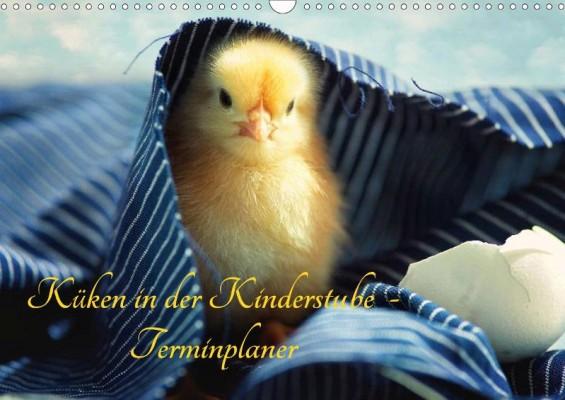 Tanja_Riedel_Kueken_in_der_Kinderstube_Terminplaner