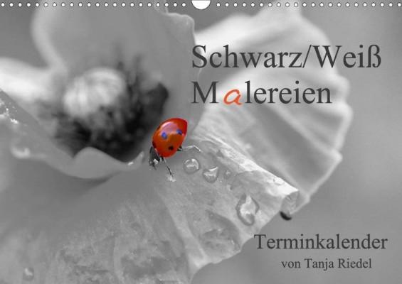 Tanja_Riedel_Schwarz-Weiss-Malereien