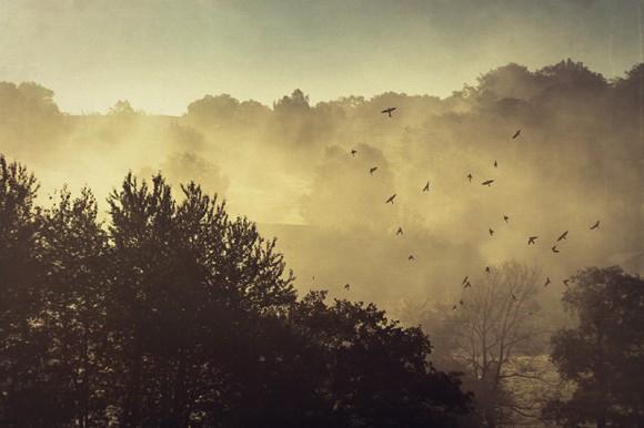 Nebelverhüllte Landschaft bei Sonnenaufgang, Wuppertal, Deutschland