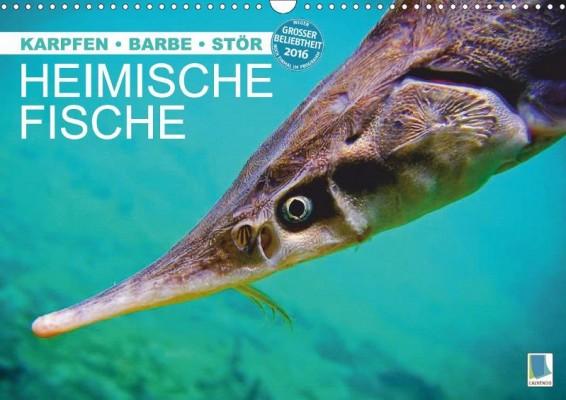 Calvendo_Heimische-Fische