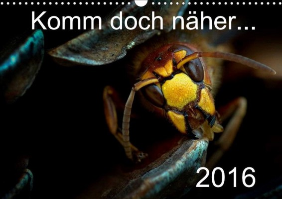Eberhard Ehmke: Komm doch näher …, awarded in animals category