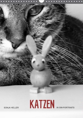 Heller_Katzen-sw