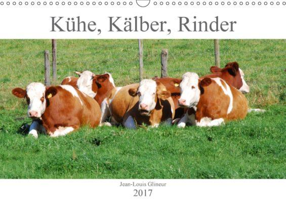 jean-louis-glineur_kuehe-kaelber-rinder