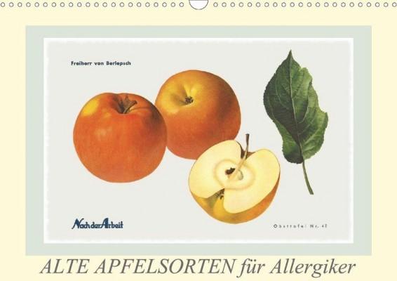 Lucy-Laube_Alte-Apfelsorten-fuer-Allergiker