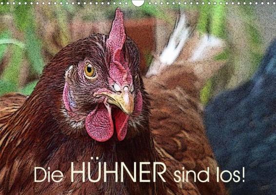 Lucy-Laube_Die-Huehner-sind-los