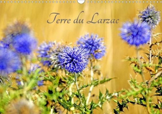Thebault_Terre-du-Larzac