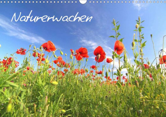 Thomas-Deter_Naturerwachen