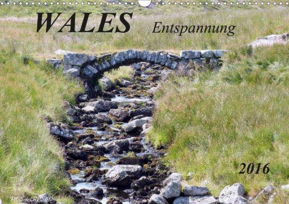 PICSdeLARSEN_Wales Entspannung-2016