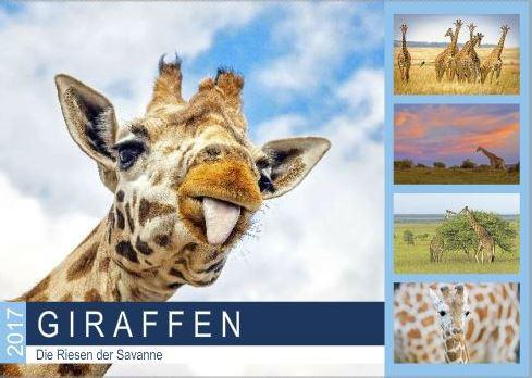 Vorlagen_Giraffen