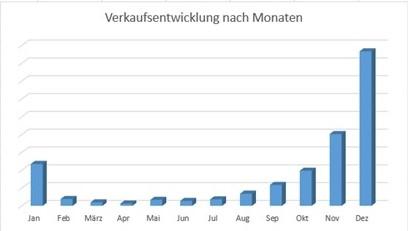 verkaufsentwicklung_monate