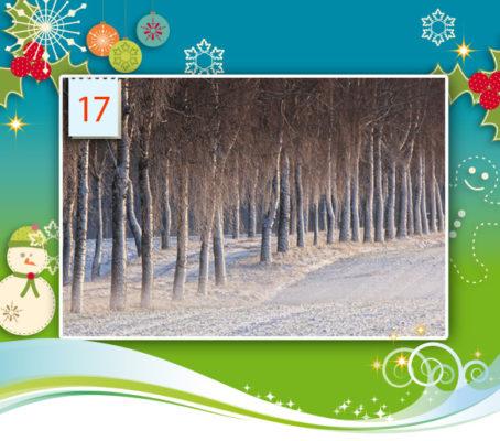 17_12_2016_adventskalender-d