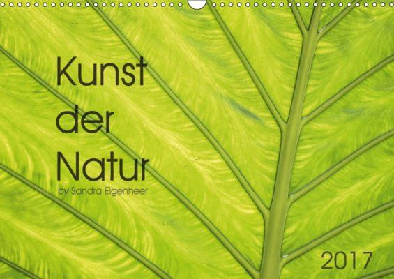 8_kunst-der-natur