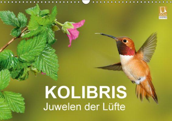 bia-birdimagency_kolibris